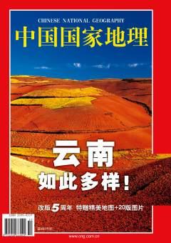 香格里拉花海图片_2002年10期 | 中国国家地理网