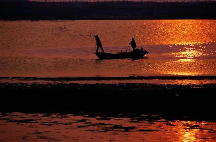 澳门湿地:填海造地下的孑遗