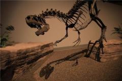 科学家检测亿年前恐龙骨骼:探秘伤口自愈机制