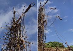 最接近死亡的成人仪式:古老部落用藤蔓蹦极