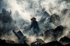 年度最佳环境摄影奖揭晓:讲述另类生存故事