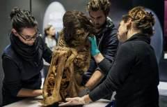 法国展出奇特木乃伊:蜷缩身体保存千年