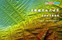 【7月27日通孚祥专场讲座】显微镜里的大世界 奇妙的显微摄影