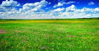 单之蔷:穿越内蒙古高原