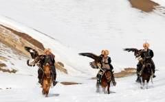 寻访哈萨克族失落的驯鹰人