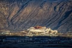 最后的光荣与梦想,鲜花与雪山的川藏公路