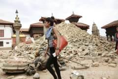 震后尼泊尔现场报道(一)