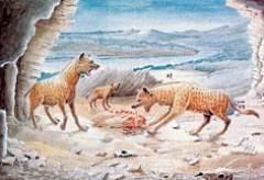 70万年前,清晨一小时