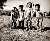 1958年,中国科学家的选择