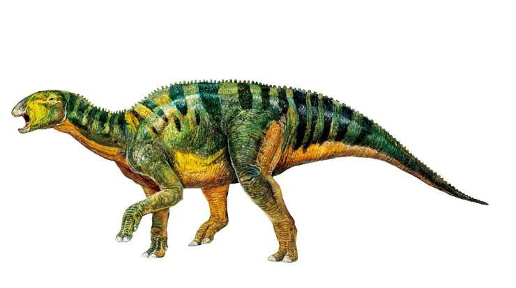 什么恐龙最厉害囹�a_甘肃刘家峡:发现世界最大的恐龙脚印