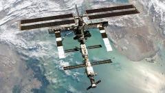 科学家在空间站外壳发现附着海洋浮游生物