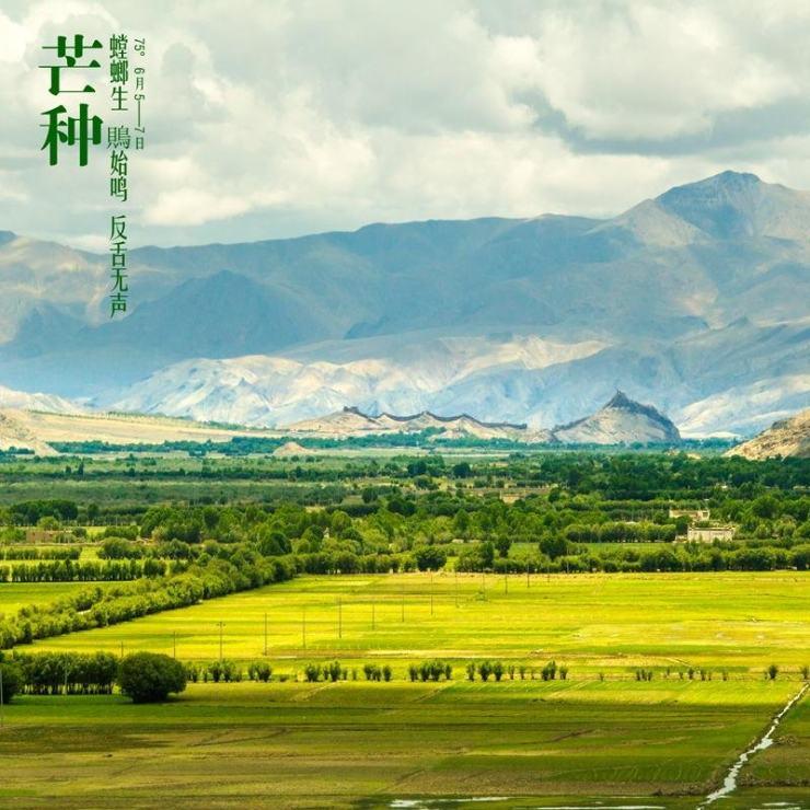 中国平原风景图片