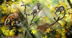 辽宁发现侏罗纪化石:哺乳动物史前推4千万年