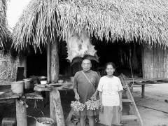 亚马逊原始部落遭遇安全危机