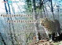 【12月4日讲座预告】中国国家级自然保护区巡礼系列——走进吉林汪清国家级自然保护区