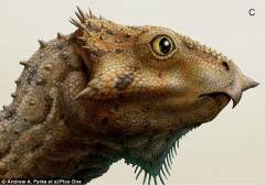 美发现秃鹰脸恐龙化石:头骨仅有柠檬大