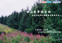【4月9日讲座预告】松山叠翠访古松——走进松山国家级自然保护区