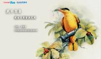 【5月7日讲座预告】花木鸟兽——我的自然绘画之路