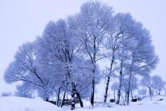 塞北山村雪景