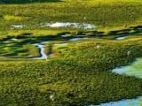 中国最美的六大沼泽湿地