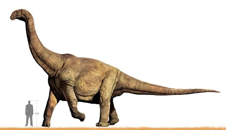 """关于恐龙的纪录片_河南汝阳:刷新世界""""巨龙""""纪录   中国国家地理网"""