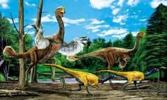 """内蒙古二连浩特:全球最大""""龙鸟""""的故乡"""