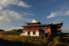 西藏没有那么美