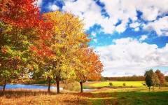 西部秋游 赏一年中最绚烂的美景