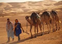 情陷摩洛哥