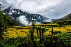 尼泊尔425地震前风光
