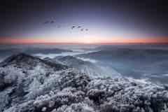 云端上的天空之城