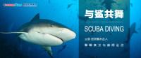 【8月25日大讲堂预告】与鲨共舞
