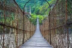 藤网临雅江 度桥蹑半空 ——记德兴藤网桥