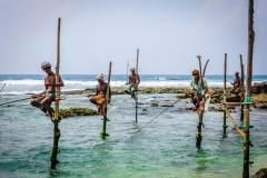 一张民族文化的独特名片——高跷钓鱼