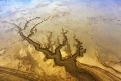 盐城黄¤海湿地――落潮留痕沙��竟也可以算是一��得力助手洲如画